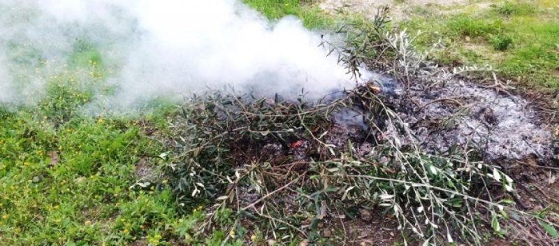 bruciare-le-erbacce